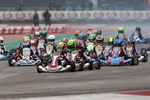 The first titles of 2020 awarded in Adria at the WSK Champions Cup: Barnard champion in OK, Spina in OKJ, Khavalkin in Mini