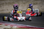 A good start in the European Championship for the Leclerc by Lennox Racing Team
