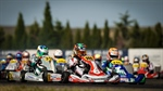Parolin Racing Kart - European Championship, Zuera (ESP) - Pole position and top six in OK-Junior in the European Championship with Rinicella