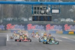 WSK Final Cup - Rd.2, first day at Castelletto di Branduzzo (I)