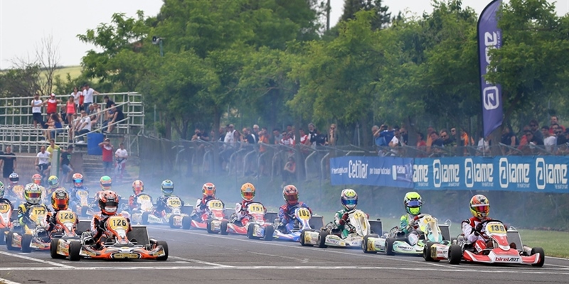 Many candidates for victory in the second round of the Italian ACI Karting Championship at the Siena...
